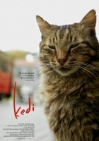 http://www.filmweb.pl/film/Kedi+-+sekretne+%C5%BCycie+kot%C3%B3w-2016-782505