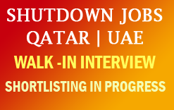 Image result for Qatar Shutdown