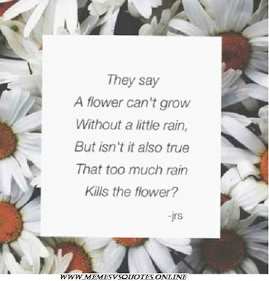 Can't grow without little rain