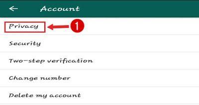 Whatsapp Blue Tick को Disable कैसे करे