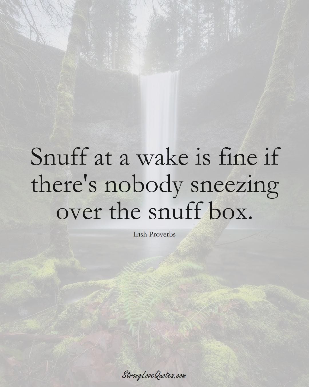 Snuff at a wake is fine if there's nobody sneezing over the snuff box. (Irish Sayings);  #EuropeanSayings