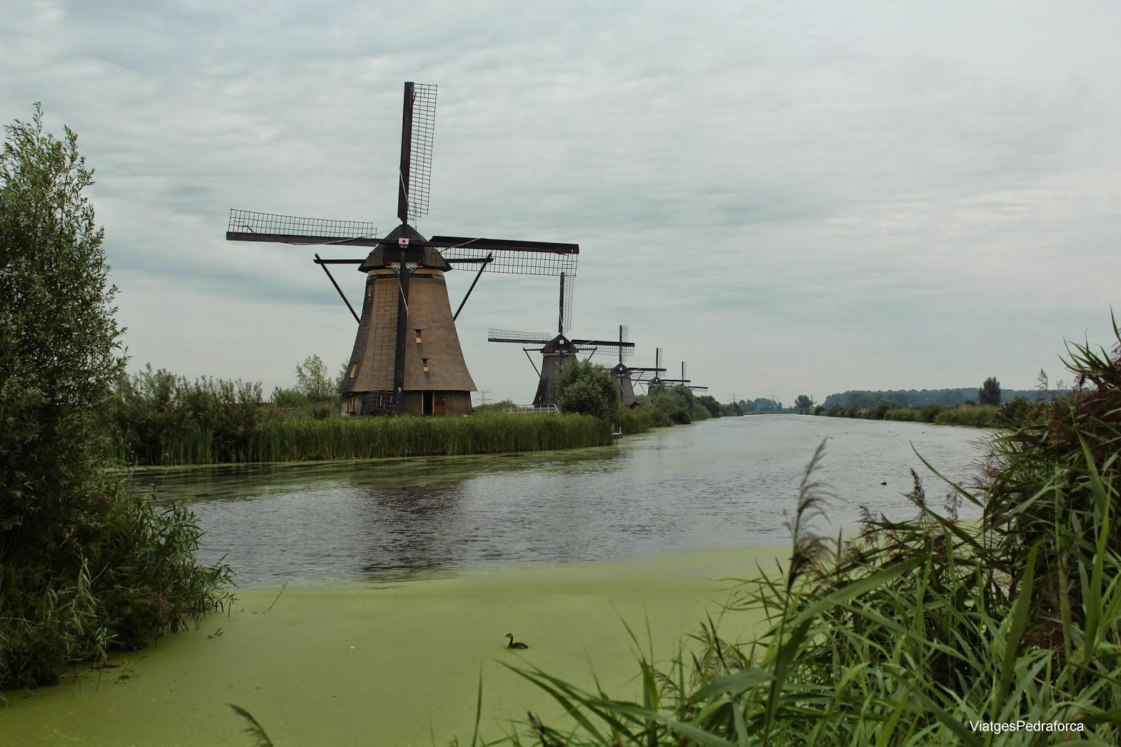 Kinderdijk Països Baixos Holanda Patrimoni de la Humanitat Unesco