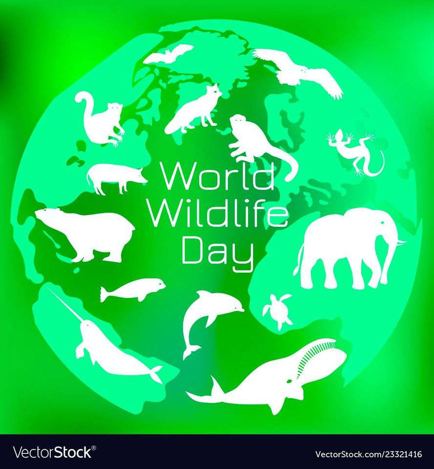 World Wildlife Day Wishes for Instagram
