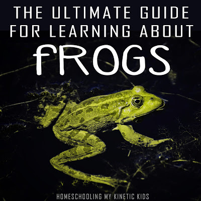 tons of frog learning ideas, printables, sensory play, and more for homeschooling with frogs