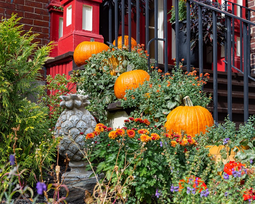Portland, Maine USA October 2016 photo by Corey Templeton. Fruit in the Front. Pumpkins and a pineapple, from October 2016.