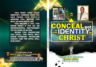 chronicle of bride of christ