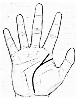 KNOW WHAT THE MARK ON YOUR PALM INDICATE