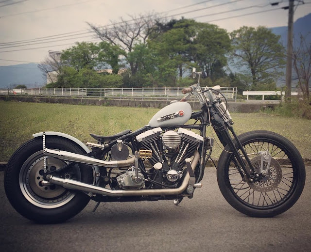 Harley Davidson By Nuts Custom Cycles Hell Kustom