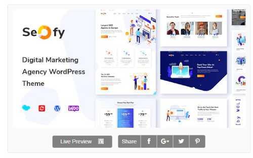 Download Seofy v1.5.7 - Digital Marketing Agency WordPress Theme