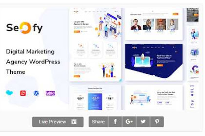 Download ⁠Seofy v1.5.7 - Digital Marketing Agency WordPress Theme