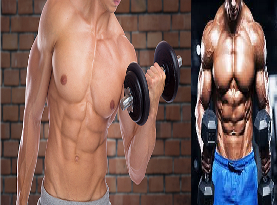 Keys To Build Muscle With Total Body Workouts