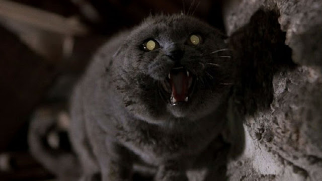 Stephen King, Pet Sematary, Church the Cat, Horror Film Facts, Stephen King Store