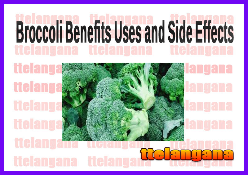 Broccoli Benefits Uses and Side Effects