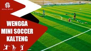 Lapangan Wengga Mini Soccer Kalimantan Sampit