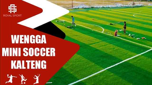 Lapangan Wengga Mini Soccer Kalimantan Tengah Sampit