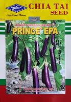 manfaat terong ungu, menanam terong ungu, benih cap kapal terbang, jual benih terong, toko pertanian, toko online, lmga agro