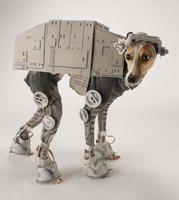 Disfraz de robot para tu mascota.