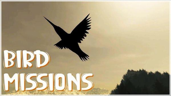 bird-missions