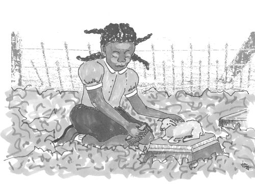 illustration of a small black girl in a cemetery from The Lonely Donkey