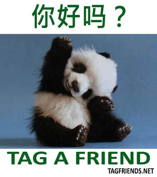How To Say How Are You In CHINESE