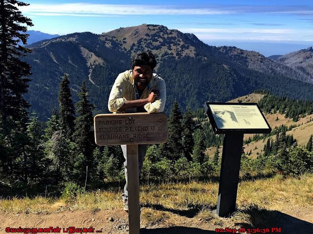 Sunrise Point Trail Hurricane Ridge