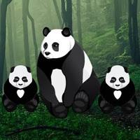 BigEscapeGames-Baby Twin Panda Escape
