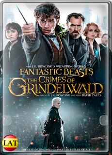 Animales Fantásticos: Los Crímenes de Grindelwald (2018) DVDRIP LATINO