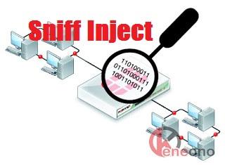 Bug Inject