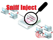 Cara Melihat Bug Inject di PC