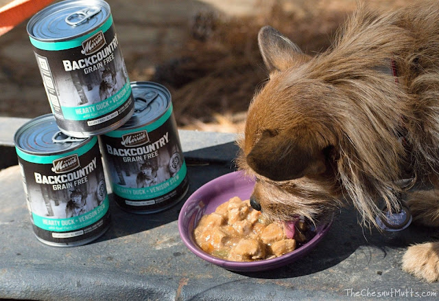 Mini Review: Merrick Backcountry Canned Dog Food