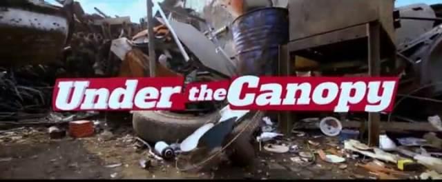 Video: Under The Canopy - Frank Edwards