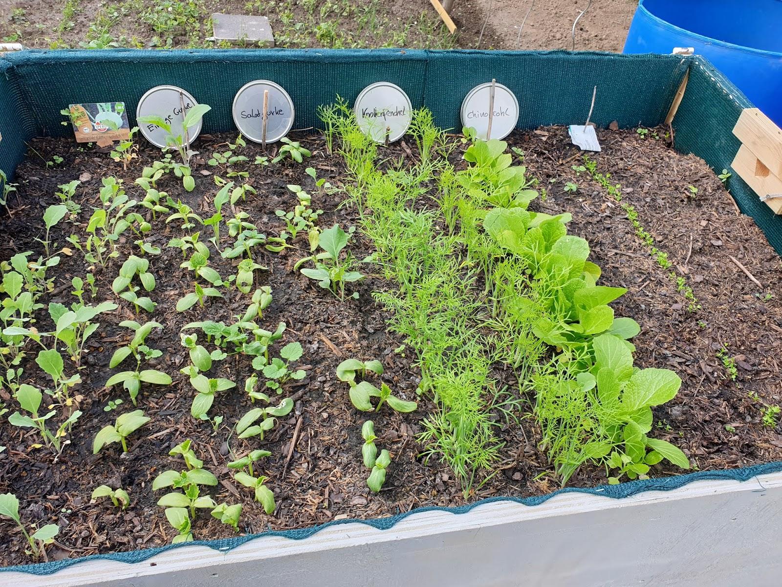 Quarantäne Gartenarbeit Erlaubt