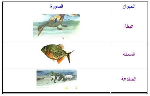 أنواع التنقل عند الحيوانات