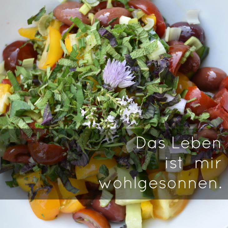 Salat aus dem Garten-Das Leben ist mir wohlgesonnen