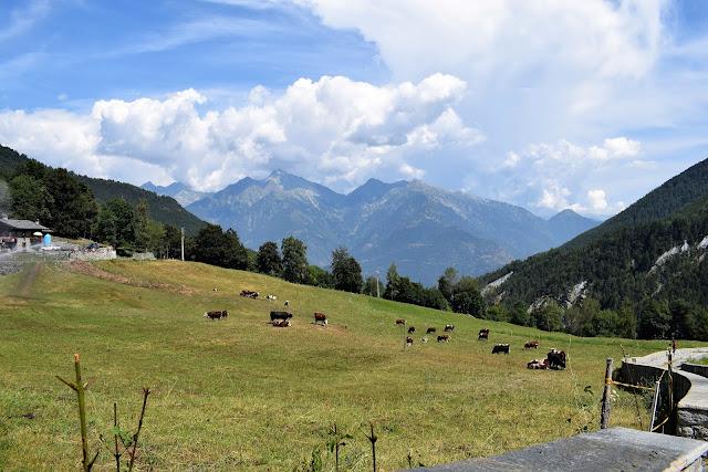 Mont-Avic-Parco-Naturale