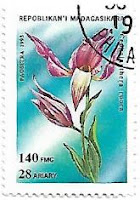 Selo Cephalanthera rubra
