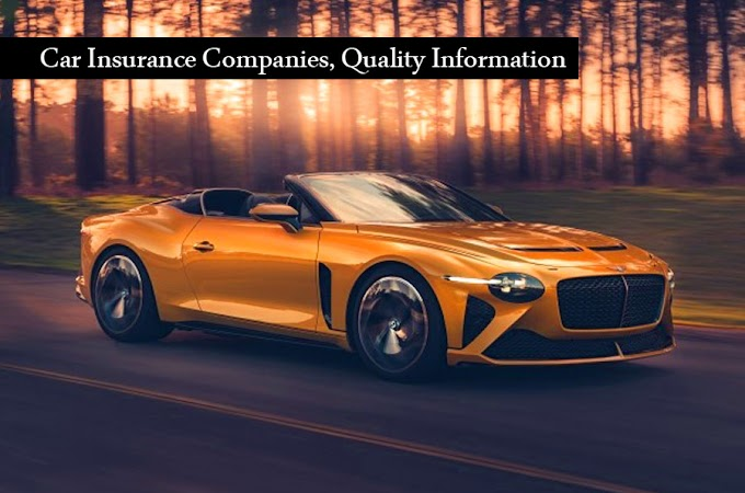 Car Insurance Companies, Quality Information
