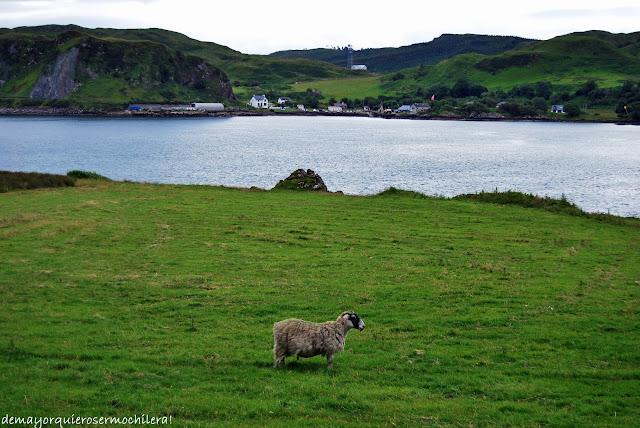 isla de Kerrera (Escocia)