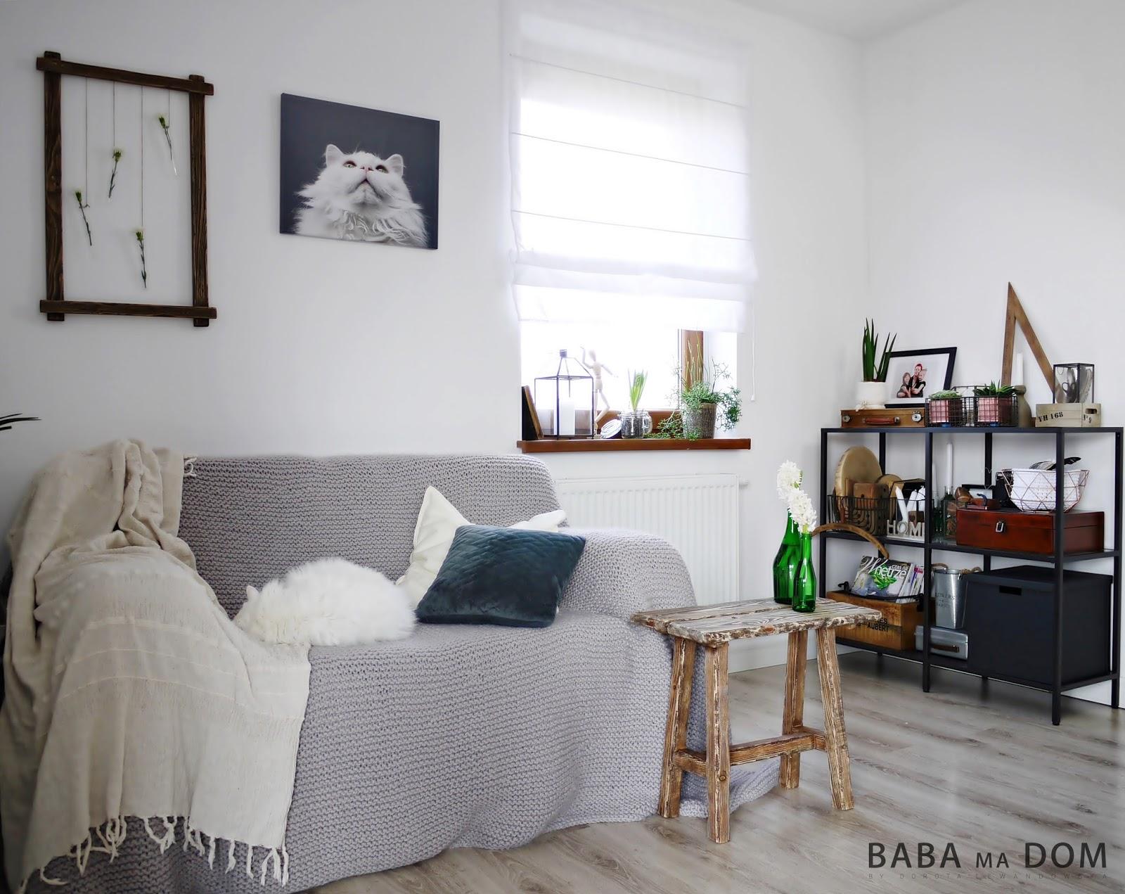 Baba Ma Dom Mały Kącik Wypoczynkowy W Salonie