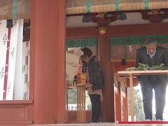 鶴岡八幡宮:御判神事