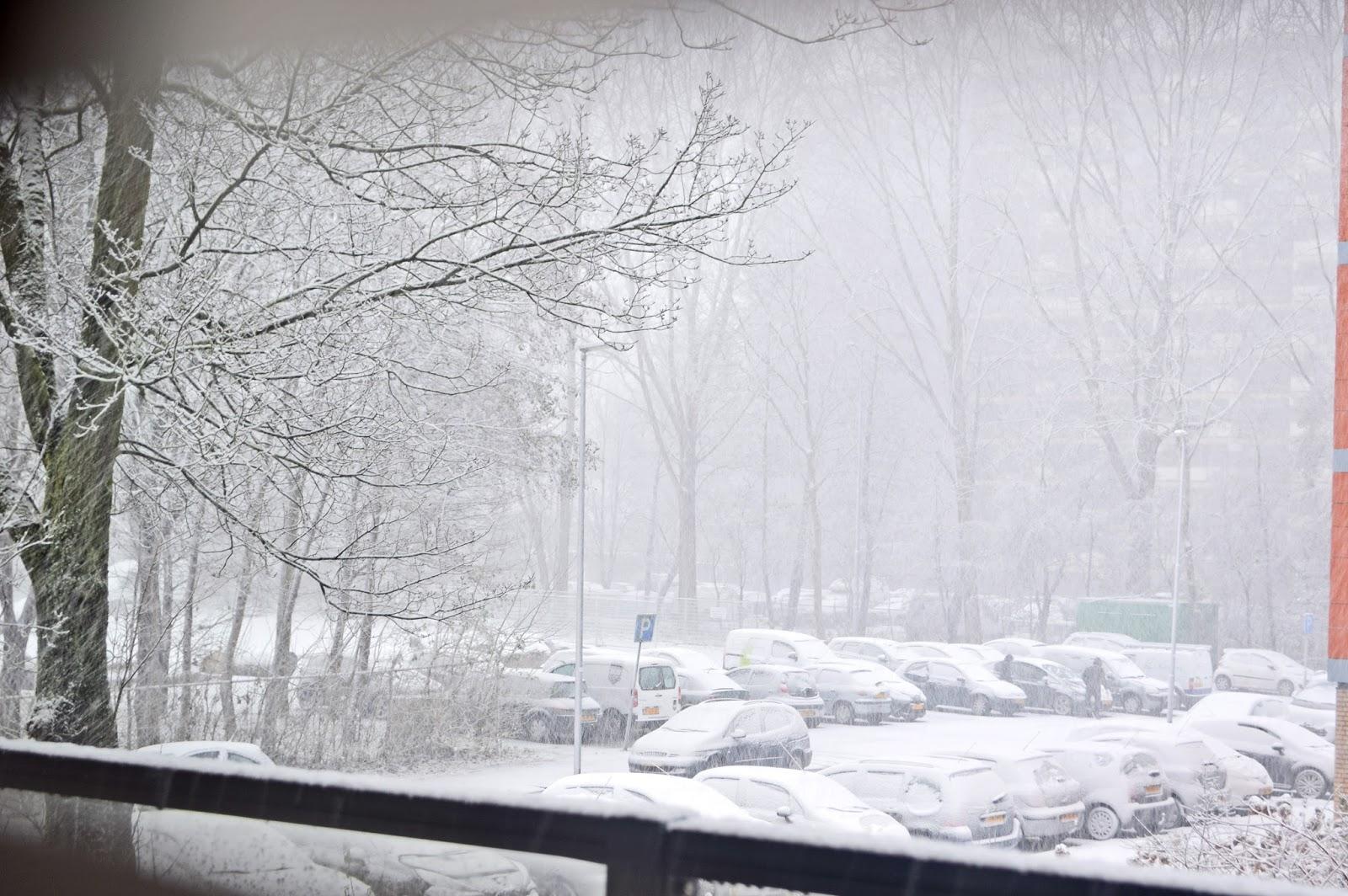 Śnieg w Holandii