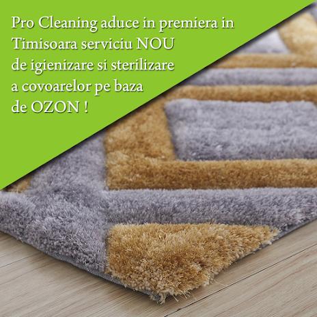 Igienizare si dezinfectare covoare cu Ozon Timisoara