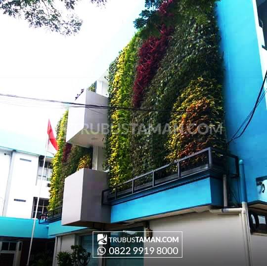 Tukang taman jakarta, jasa pembuatan taman vertical garden.