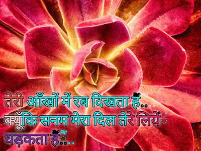 hindi-love-shayari-photo