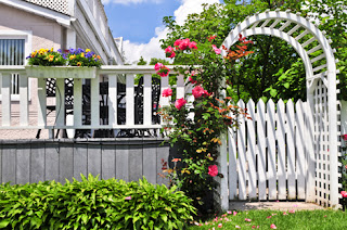 Photo of a Summer Garden with a Climbing Rose at a White Arbor