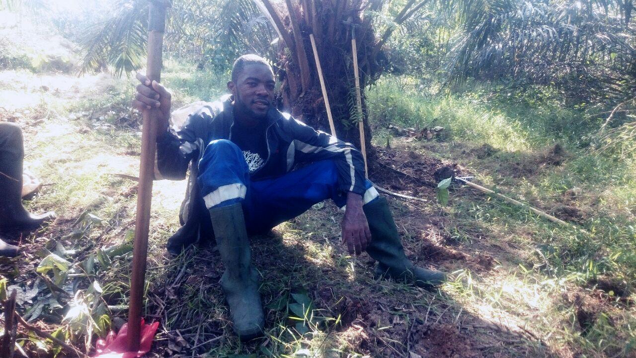 Les nouvelles du monde l 39 agriculture camerounaise selon for L agriculture