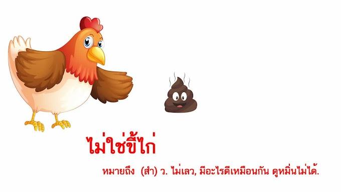 ไม่ใช่ขี้ไก่ หมายถึงอะไร?