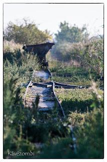 Elhagyott sínek valahol az Alföldön