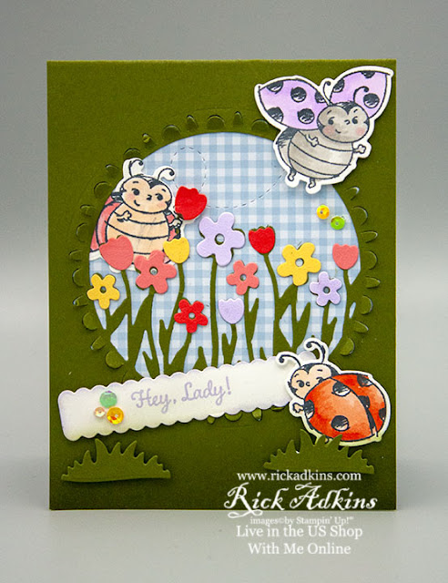 Sending Flowers dies, Little Ladybug Stamp Set, Stampin' Blends, Window Card, Stampin' Up!, Rick Adkins Independent Stampin' Up! Demonstrator