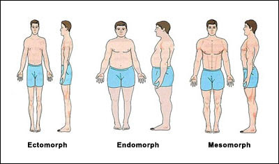 discover your body type